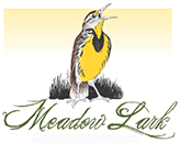 meadow lark music festival